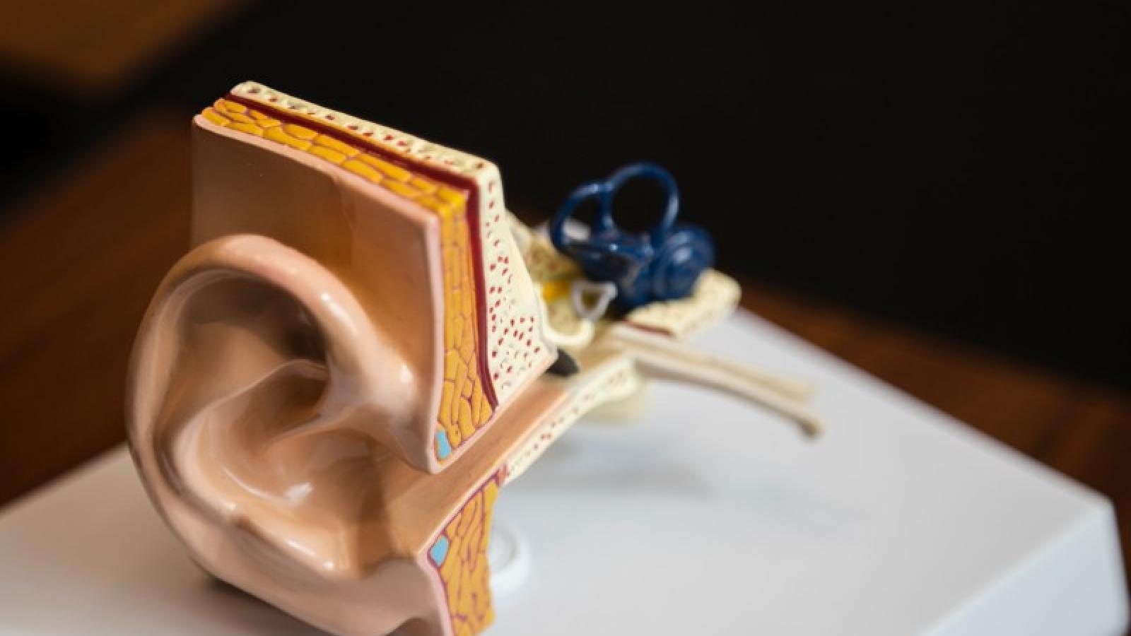 Conheça 3 tipos de perda auditiva